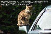 Фотка vadimka